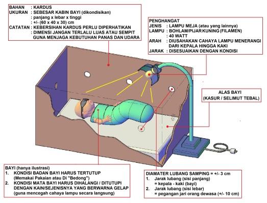 inkubator darurat dari kardus
