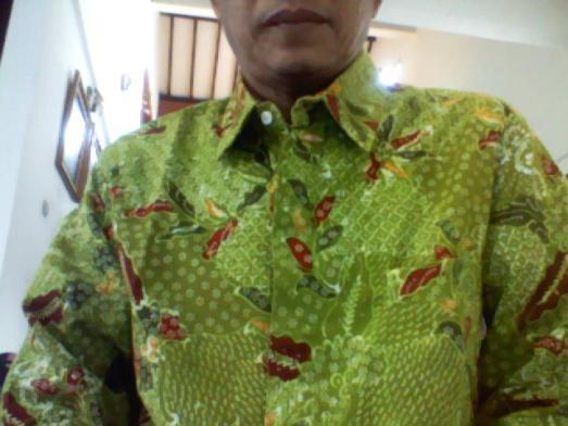 Batik foto v1