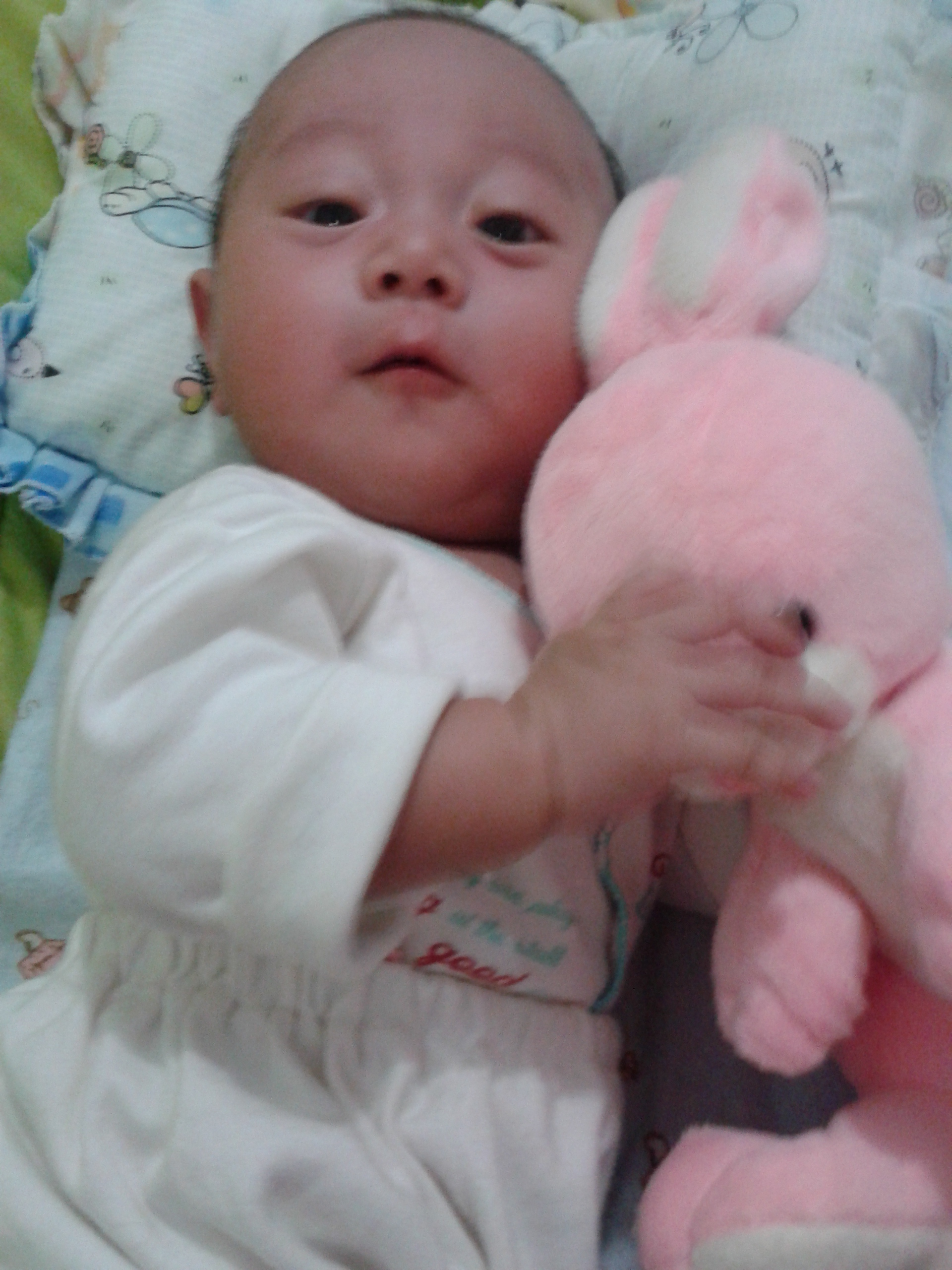 Bayi Raldi Artono Koestoer