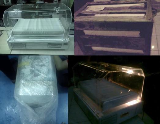 Packing inkubator untuk dikirim keluar pulau